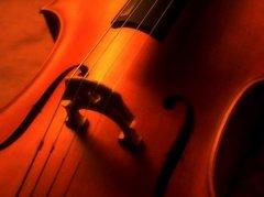 我从旋律中感受到了悲伤,还有丝丝的冷漠