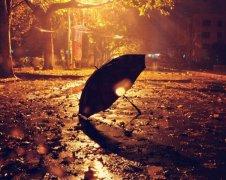 雨夜的心痛句子