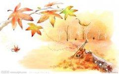 秋的优美句子