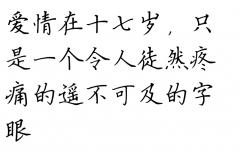 饶雪漫爱情句子