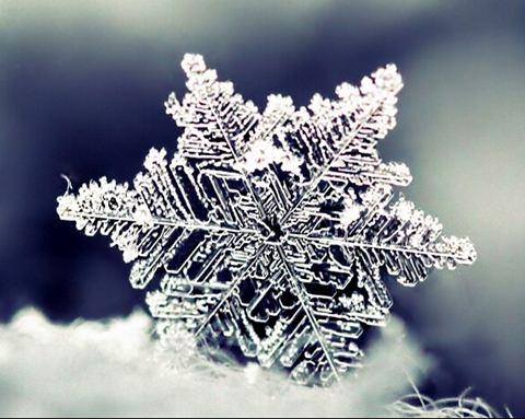 描写下雪的句子